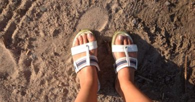 Jaké boty si pořídit na léto