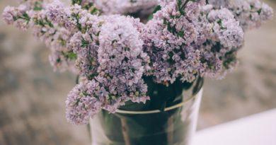 květiny do vázy