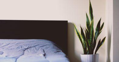 zásady zdravého spánku