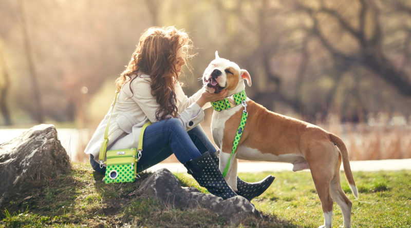 I váš pes může být fešák! Originální doplňky pro psy, které vás sladí